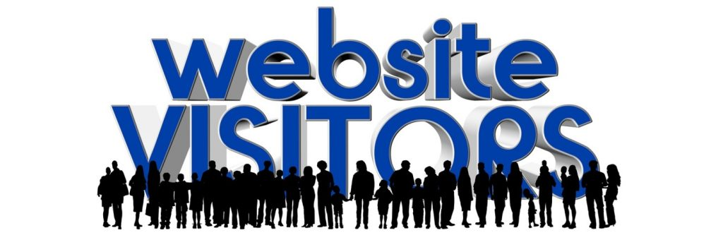 Organic Visitors for the Website