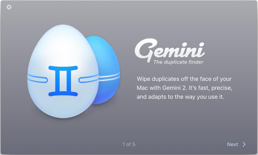 Gemini 2: The Duplicate Finder
